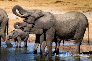 Grand Escapades' Travel Guide To Zimbabwe